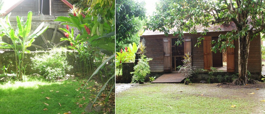 Habitation l 39 oiseau en pleine nature - Maison en pleine nature ...